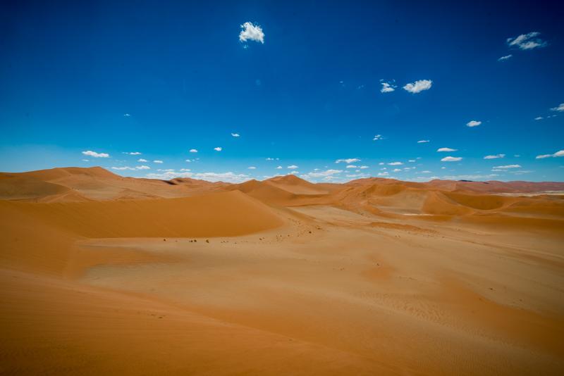 Wydmy pustyni Namib